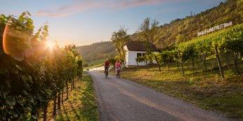 © Saale Unstrut Tourismus e.V.