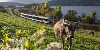© Regionalbahn Thurbo AG